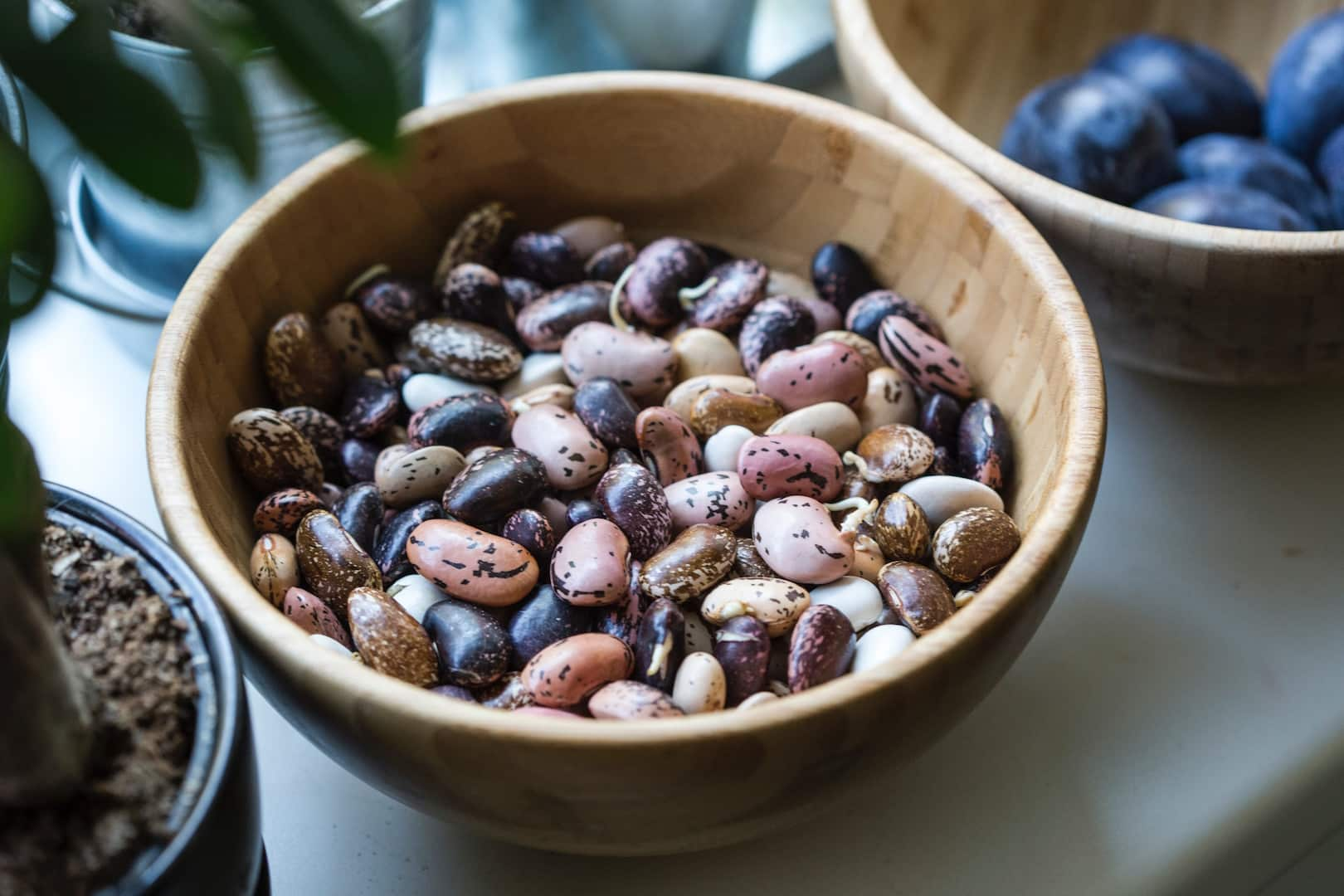 Foods for hypothyroidism - meats and legumes