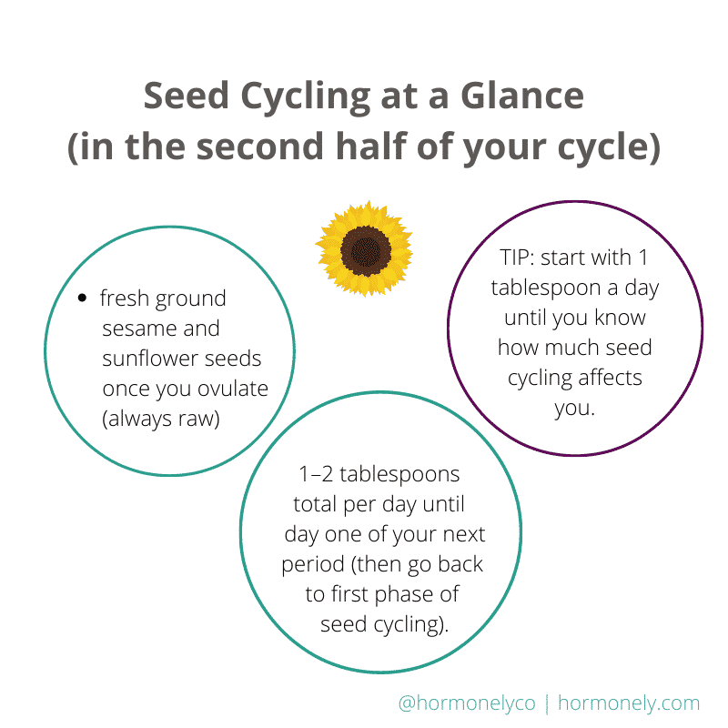 Does seed cycling work on hormones? Infographic on seed cycling in your luteal phase