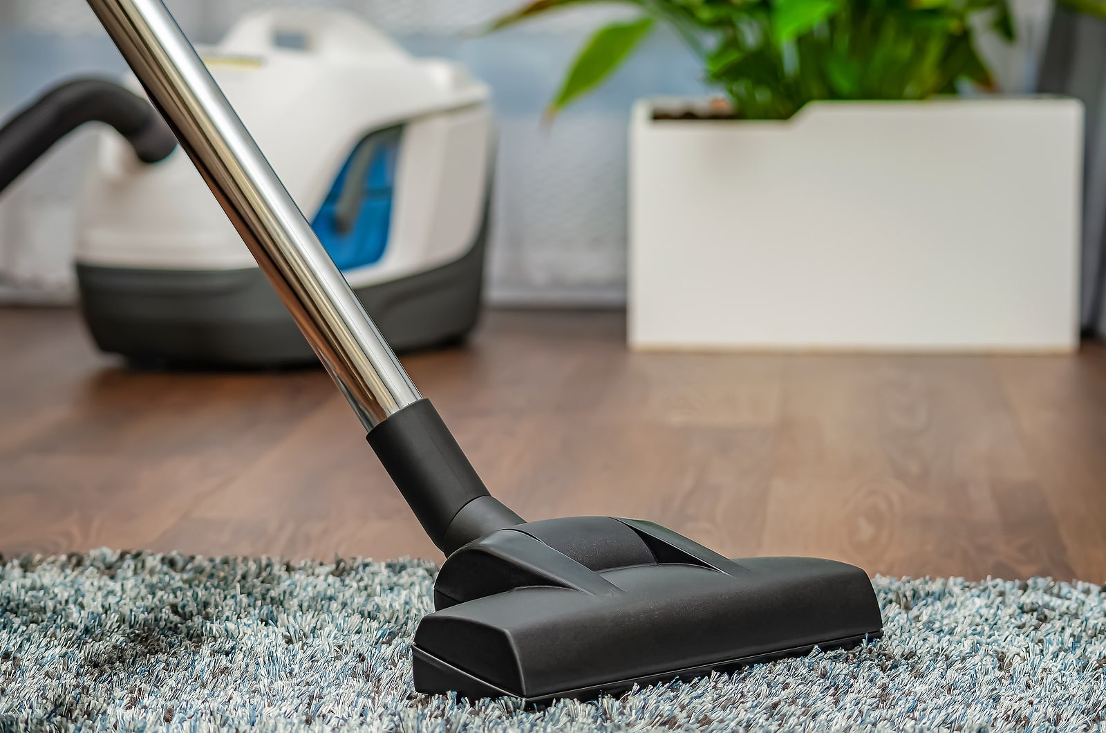 Ways to reduce toxins that affect your fertility- vacuumming